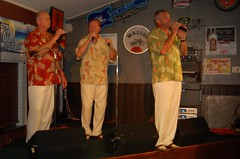 Great Music by The Imitations (StFrancis2) Tags: cats wow luau bow meow 2011