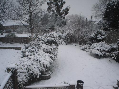 Neve!!! (19)