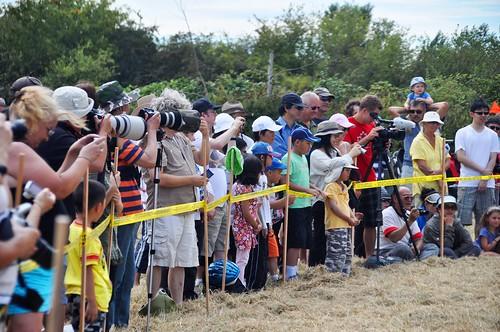 Huge Crowds at The Raptor Festival