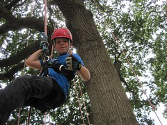 IMG_3761 (Goodleaf Tree Climbing) Tags: treeclimbing goodleaf isleofwightactivities