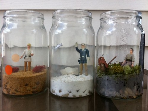 Star Wars Terrariums - round 2!