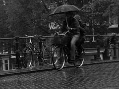 Una bici y un paraguas para dos/A Bike and an Umbrella for two (Joe Lomas) Tags: leica holland rain amsterdam bike bicycle umbrella lluvia bicicleta bici holanda paraguas neederlans photostakenwithaleica