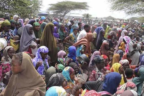 Crisis alimentaria en Africa 2011 - 001