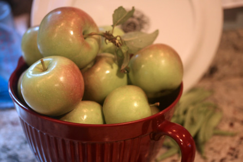 apples 072