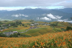 IMGP8475 (Rick.Ying) Tags: taiwan hualien sixtystonemountain goldenneedles fulitownship jhutianvillage
