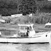 Working Trawler-6965