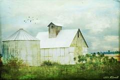 Illinois Barn (Passion4Nature) Tags: texture barn illinois ie birdbrush tatot magicunicornverybest magicunicornmasterpiece sbfmasterpieces sbfgrandmaster