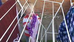 Hanging out the washing (bryanpage) Tags: children housework zachary pegs washing chores washingline zacharyzebastianpage zacharypage