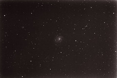 M101 with Supernova PTF11kly (nicholall) Tags: ptf11kly supernova svr80ed stellarvue80ed stellarvue pinwheelgalaxy m101 messier astrophotography Astrometrydotnet:version=14400 Astrometrydotnet:id=alpha20110990590479 Astrometrydotnet:status=solved