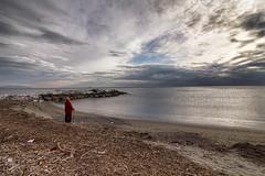 IMG_3853-Modifica (caposella) Tags: marinella montemarcello uscitesolitarie