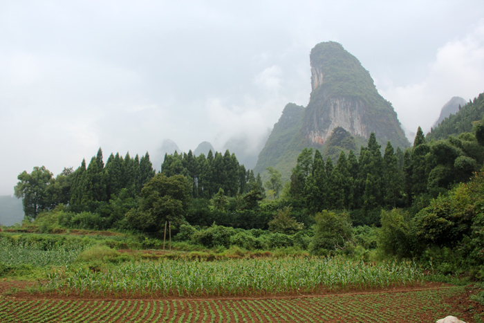 Hike from Yangdi to Xingping