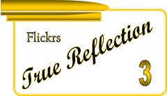 Flickrs True Reflection - Level 3