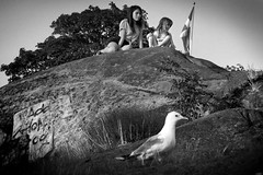 Two girls and a seagull in Stockholm, Sweden 30/6 2011 (photoola) Tags: street bw barn children la sweden stockholm bambini seagull schweden kinder nios enfants sverige mwe gaviota sv sucia estocolmo gabbiano stoccolma suecia mouette dzieci djur sude fgel tukholma  svezia lapset  lokki svartvitt ffngan sztokholm szwecja ruotsi mewa     czarnobiay tukholmassa   photoola