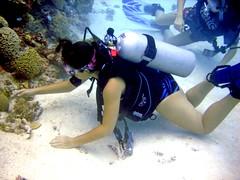Touch The Sea-II (DivePhoto) Tags: coral scuba diver