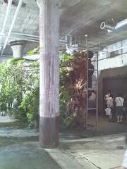 横倒しの森-横浜トリエンナーレ2011の写真