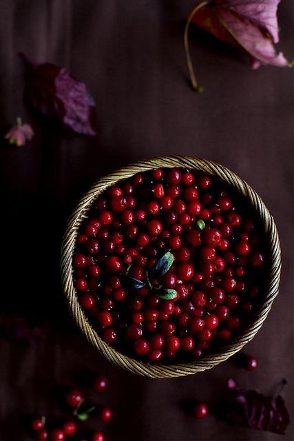 3 Ingwervanille-Cowberries Cranberries Ingred Fall
