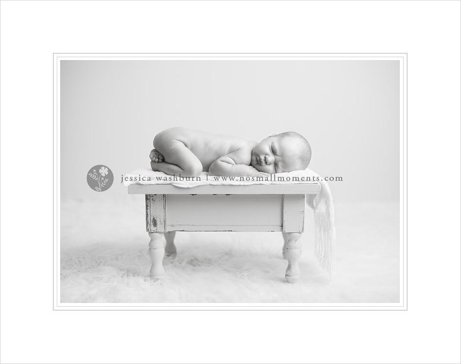 Albany-newborn-photography