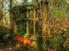 Wood and Frame (Mr Grimesdale) Tags: ruins olympus lancashire derelect merseyside acientruins lydiate e510 stevewallace westlancashire lydiatehall mrgrimesdale