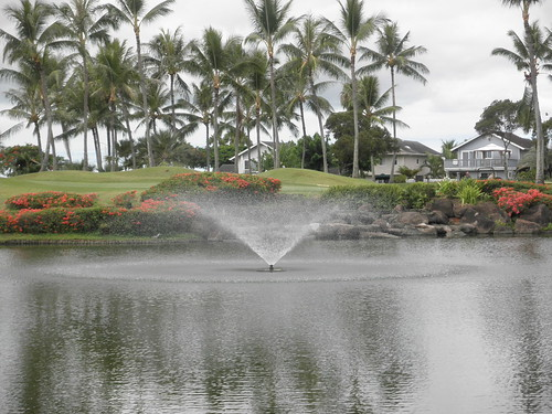 WAIKELE COUNTRY CLUB 073