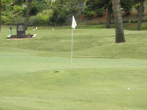 WAIKELE COUNTRY CLUB 231