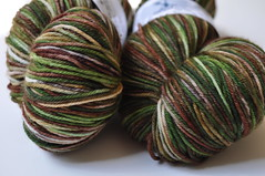 Whidbey Sock - Forest Greens MCN by Rain City Fiber Arts