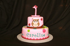 "Owl cake • <a style=""font-size:0.8em;"" href=""http://www.flickr.com/photos/60584691@N02/6153195947/"" target=""_blank"">View on Flickr</a>"