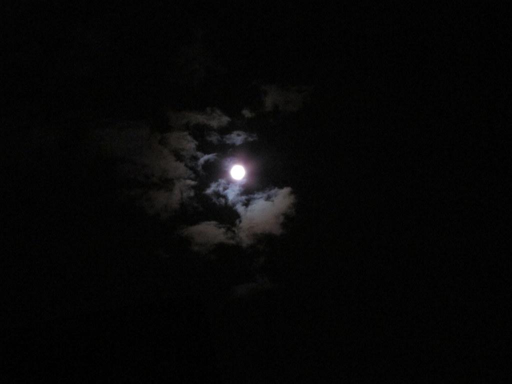 the mid-autumn moon,