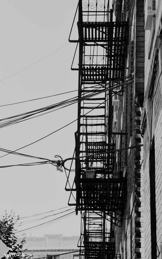 escaliers-queens-NYBW