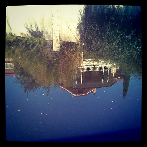 Reflection in the river. San Antonio, TX