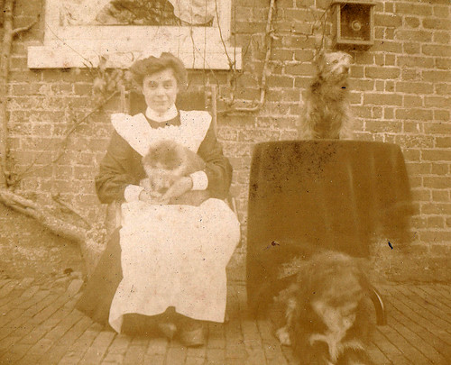 Maid with cat and two dogs. 1900s