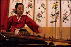 Kayagum Player at P'ansori Performance, Seattle (Washington State Folk Arts) Tags: musicalinstruments storytellers narrators verbalartsandliterature kayagums koreanpansoriperformers
