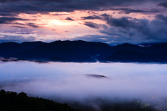 Island? (samyaoo) Tags: light red cloud mist mountain tree green yellow fog night sunrise long exposure taiwan    sunmoonlake seaofclouds nantou