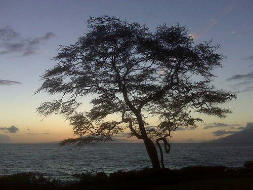 Sunset @ Wailea