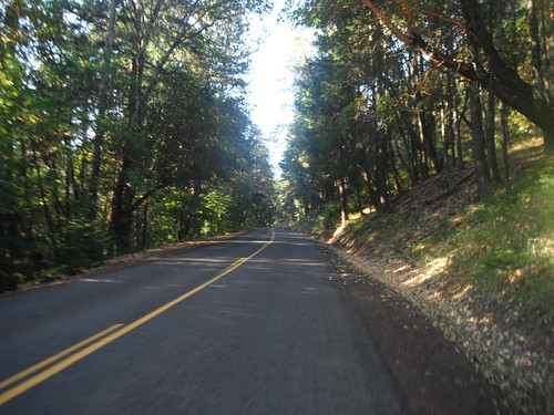 Mt. Ashland Road: Lower Down