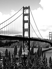 Golden Gate, without the gold (dewwshane) Tags: sanfrancisco bridge blackwhite scenic goldengatebridge mygearandme mygearandmepremium musictomyeyeslevel1