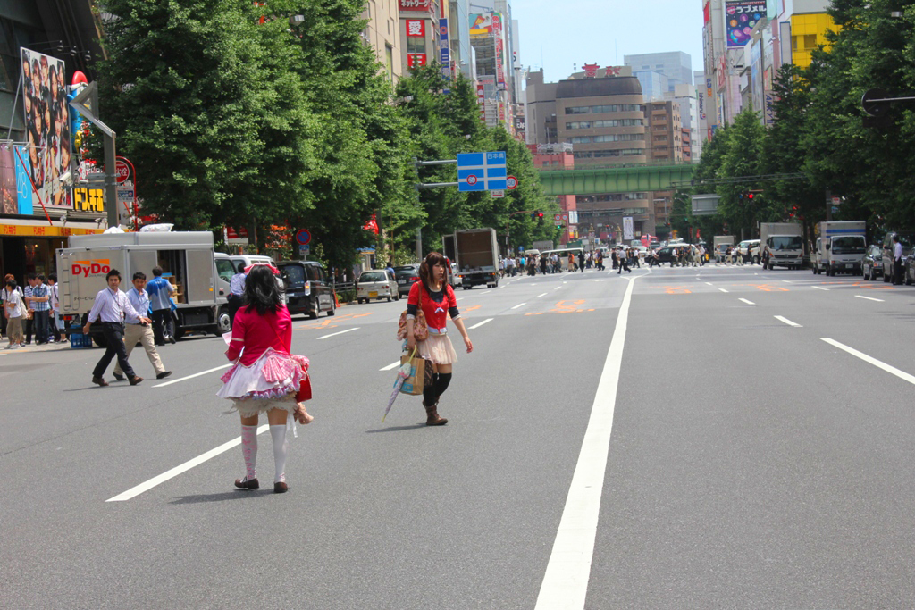 A walking guide of Akihabara (20)