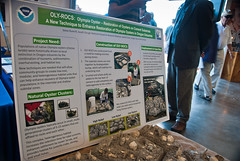 Joanne Choi's OLY-ROCs project on display at NOAA open house