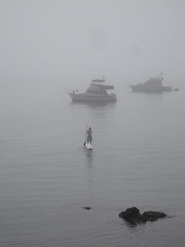 Fog rider
