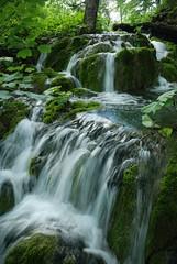 DSC_0042 (Luca Mosso) Tags: nature water croatia waterfalls acqua croazia plitvice cascate cascata acuqa