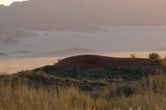 Red hill (MrBlackSun) Tags: park camp dune sesriem namibia rand sossusvlei namib tented 2011 sossus kulala naukluft namibnaukluftpark wolwedans tsauchab namibnaukluft namibrand namibrandnaturereserve namibrandreserve namibia2011 wolwedanstentedcamp wolwedansdunecamp