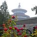 20082011 Pekin Templo del Cielo - 125