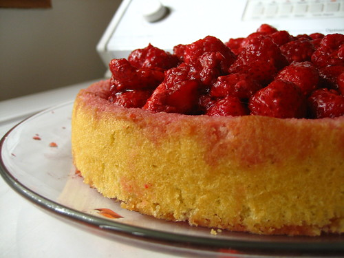 Red Fruit Shortcake