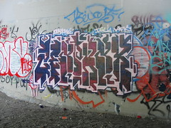 ZENPHONIK (Lurk Daily) Tags: graffiti bay san south jose wf wfk zenphonik