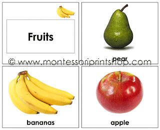 Fruit Cards  (Image from Montessori Print Shop)
