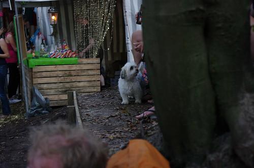 Olaf en Jasper met vrienden in de bosjes 2011