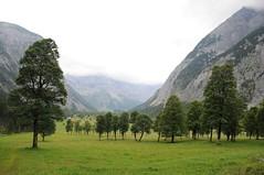 Im Großen Ahornboden, NGID910205397 (naturgucker.de) Tags: tirol sterreich naturguckerde ccarolinzimmermann ribachtald ngid910205397