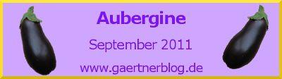 Garten-Koch-Event September 2011: Aubergine [30.09.2011]