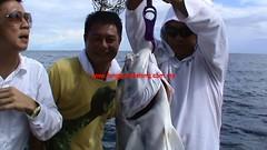 20100716 (fymac@live.com) Tags: mackerel fishing redsnapper shimano pancing angling daiwa tenggiri sarawaktourism sarawakfishing malaysiafishing borneotour malaysiaangling jiggingmaster