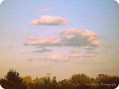 painting (Car Smity Photography) Tags: trees sky nature clouds painting photography