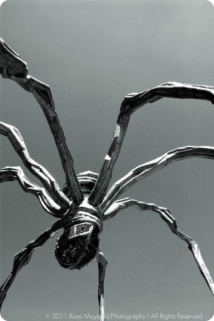 Spider Maman 1 3 bis